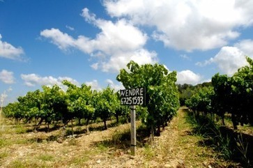 More chateaux sales expected as tax and land prices increase in France | decanter.com | Grande Passione | Scoop.it