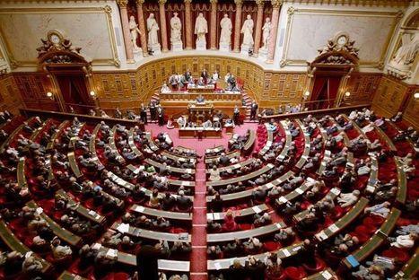 Le Sénat rejette la réforme des retraites - Libération   La Retraite c'est maintenant   Scoop.it