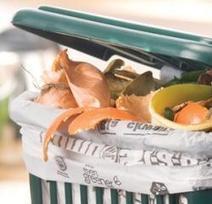 Decreto Ambiente approvato al Senato: finalmente sacchetti veramente compostabili? | Sostenibilità ambientale | Scoop.it
