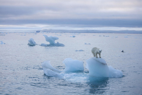 Military experts warn of 'epic' humanitarian crisis sparked by climate change   Samhället - ekonomi - ekologi - Återvinning - Återbrukning - Simple Living   Scoop.it