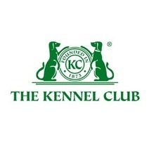 A Shocking Way To Treat A Dog • The Kennel Club | My Scotland | Scoop.it