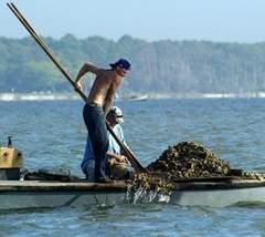 RESTORE Act 'monumental' to coastal economies - Tallahassee.com   Fish Habitat   Scoop.it