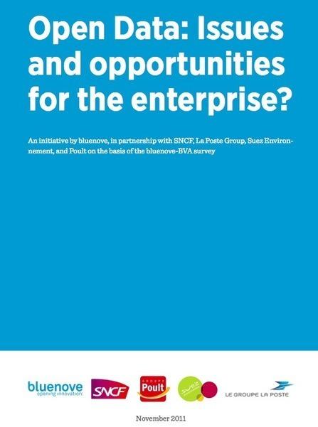 bluenove : Le Livre Blanc de bluenove sur « L'Open Data: enjeux et opportunités pour l'entreprise | Web et Social | Scoop.it
