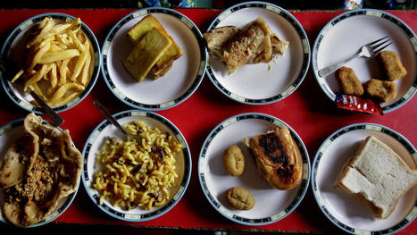 School Lunches Around the World | AP Human Geography @ Hermitage High School - Ms. Anthony | Scoop.it