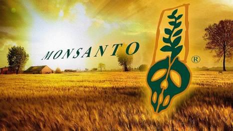 Monsanto va être poursuivi pour crimes contre l'humanité à la Cour pénale internationale   Home   Scoop.it