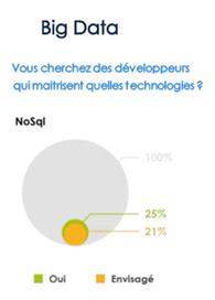 Big Data : les profils de développeur les plus prisés dans le secteur IT - Journal du Net | Business Intelligence IT | Scoop.it