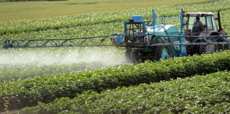 La France : toujours championne des pesticides en Europe - Sciences et Avenir   Responsabilité humaine et environnement   Scoop.it