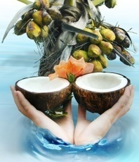 Brain Benefits Of Coconut Oil, Coconut Cream | Brain Plasticity | Scoop.it