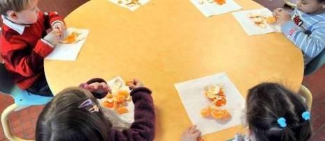 Six Français sur dix inquiets des effets de l'alimentation sur leur santé | notre métier le commerce ! | Scoop.it