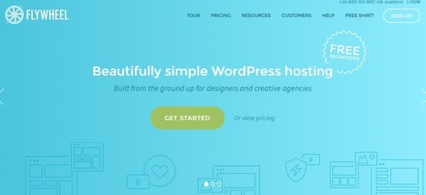Top Five Reasons Why Web Designers Should Host With FlyWheel | IT | Scoop.it