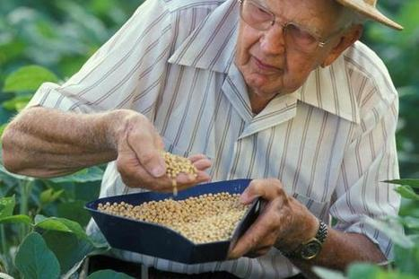 Agricultural Research Needs to Be a Priority | National Institute of Food and Agriculture | Food Security | Scoop.it