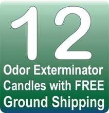 Southland Trade Any 12 Odor Exterminator Candles with free Ground Shipping | Homemade Fudge | Scoop.it