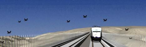Nuevas pantallas para las aves en la alta velocidad | TrenIT | Scoop.it