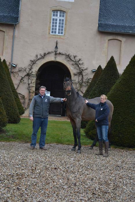 The Stallion Company fait de Rodez un nouveau berceau de l'élevage équestre | L'info tourisme en Aveyron | Scoop.it