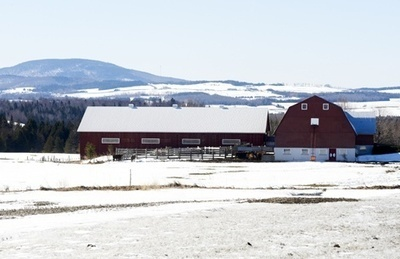 Québec allège la pression fiscale exercée sur les producteurs | Food issues | Scoop.it