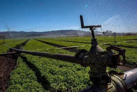 Farming And Tech: Two Sides Of California Converging To Bring More To The ... - Forbes | Inclusive Business and Impact Investing | Scoop.it