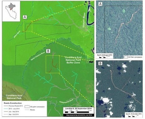 New mapping project uncovers road networks in #Peru's primary forests #satellites #archeology #science | Limitless learning Universe | Scoop.it