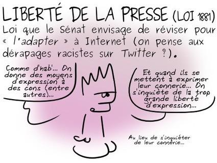 Geektionnerd : Liberté de la presse (loi 1881)   Libertés Numériques   Scoop.it