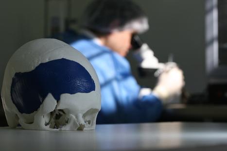 Científicos y empresarios argentinos brillan en el mundo de los genes | Ciencia y Tecnología Iberoamericana | Scoop.it