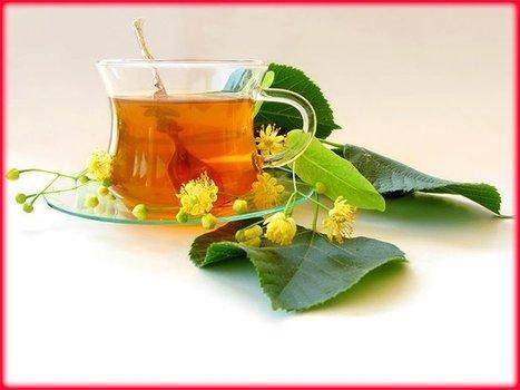Lime Blossom   Holistic & Alternative Health   Scoop.it