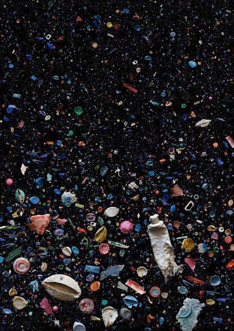 Swim Down Through a Sea of Trash With Dramatic, Eerily Beautiful Photos by Mandy Barker | Water Stewardship | Scoop.it