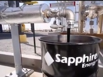 Sapphire & Phillips 66 Embark on Algae Partnership | leapmind | Scoop.it