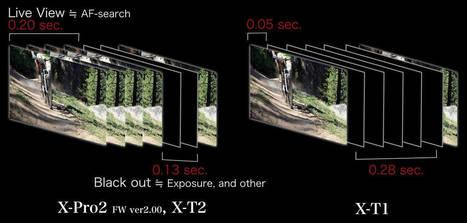 Evolution of Autofocus   Fuji Addict   Photo and Fujifilm   Scoop.it