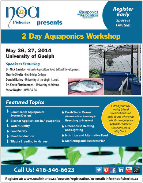 2 Day Aquaponics Workshop + 1 Day Build Workshop | Precision Agriculture | Scoop.it