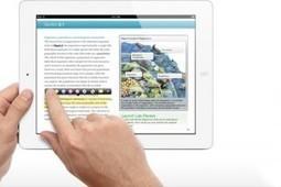 El libro de texto y la profesionalidad docente | Las TIC y la Educación | Scoop.it
