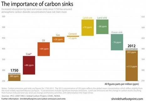 Global carbon emissions and sinks since 1750 | Zero Footprint | Scoop.it