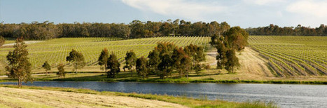 Heathcote Estate Shiraz | Heathcote Wine Hub | Scoop.it