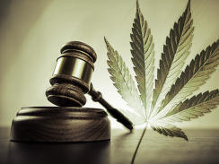 Two House Dems on recreational pot: Legalize it | fitness, health,news&music | Scoop.it