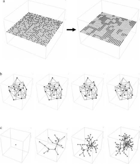 Modeling complex systems with adaptive networks | AL_TU research | Scoop.it
