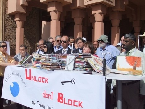 Voices Of The Blind In Marrakesh Hope To Carry A Long Way | Intellectual Property Watch | equit access.libr | Scoop.it