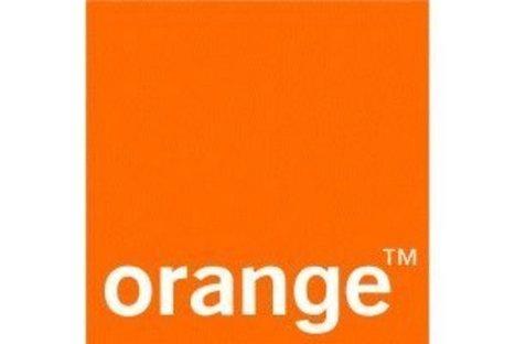 Gallimard, Flammarion et SFR s'associent à Orange pour sa bibliothèque numérique | Bibliothèques numériques | Scoop.it