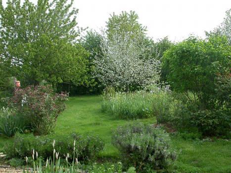 10gestes simples pour aménager un jardin plein de vie - DEFI-Écologique : le blog   Attitude BIO   Scoop.it