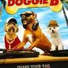 Doggie B Reviews