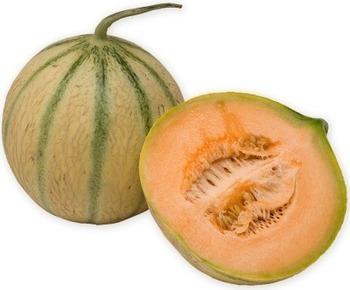Melon | Jardinage bio | Scoop.it