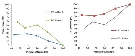 High-fat, low-carb diets: good for you and your cycling? | | Endurance Sports Nutrition | Scoop.it