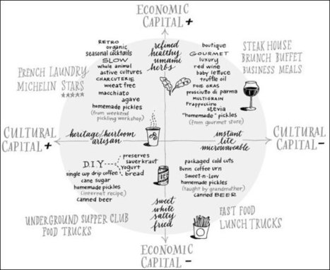 Bourdieu's Food Space - Gastronomica | SemioFood | Scoop.it