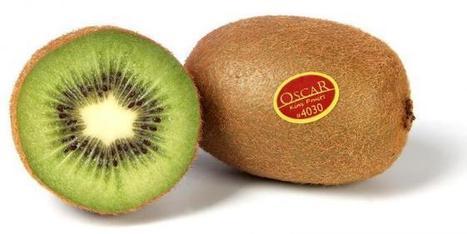 Le kiwi Oscar® débarque sur le marché coréen | L'Arboriculture fruitière | Fruits et Légumes d'Aquitaine | Scoop.it