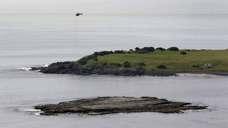 Chopper targets infestation on Big Island off Port Kembla | Port Kembla Today and Yesterday | Scoop.it