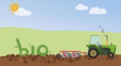 Le bio continue de grappiller du terrain sur l'agriculture chimique | Créatifs culturels | Scoop.it