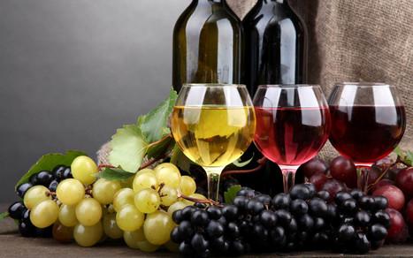 Real Taste of Wine At wine Shop in Singapore | Wine Shop For U | Scoop.it
