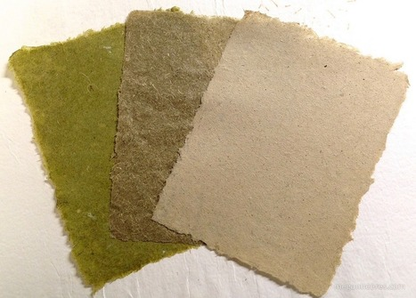 Making Paper from Invasive Plants | Make: | Forestry Conservation | Scoop.it