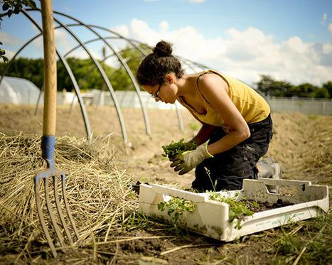 La permaculture peut-elle nourrir les Français? (Slate) - Re-informe.com | Revue | Scoop.it