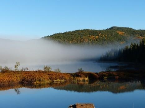 Lac Piché - Forêt de Montmorency - Québec - Canada | Faaxaal Forum Photos gratuite Faune et Flore | Scoop.it