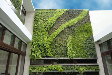 GSky Plant Systems: Beautiful Living Walls & Green Roofs Store ... | Eco-friendly roofs:  green, white, and garden | Scoop.it