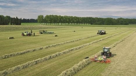 Claas - Les nouveautés des gammes tracteur, télescopique et fenaison pour 2014 | RDV Agri, Actu des Professionnels de l'Agriculture. | Scoop.it