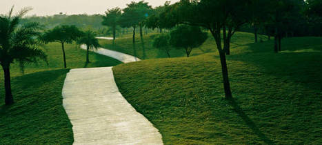 This vacation gift yourself a relaxing break by playing golf in India! | Golftripz | Scoop.it